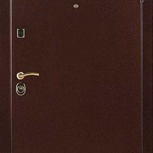 Порошковая дверь DR101