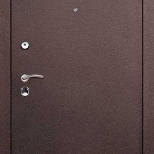 Порошковая дверь DR157