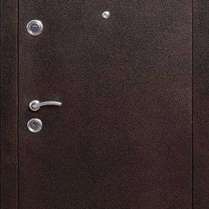Порошковая дверь DR211